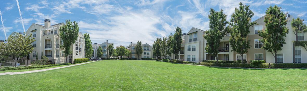 きれいな家と芝生